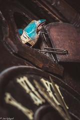 Gowk in the clock (Jan Vykypel) Tags: macromondays cuckoo macro detail close voigtlander apo lanthar 110mm sony alpha a7ii clock old vintage