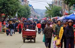 Maping - Main Street (cnmark) Tags: china guangxi maping street road trees people crowd crowded market 中国 广西 马坪 马坪乡 马坪镇 市场 ©allrightsreserved