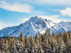 Westernly peaks (Bryan Esler Photo) Tags: green trees mountain idaho snow peaks winter blueskies em1x olympus