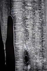 Ice (Claude Tomaro) Tags: yellow ice winter claude tomaro