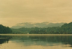 (rqlevy) Tags: 35mm film analog saltcreek olympicpeninsula washington pacificnorthwest nature landscape travel