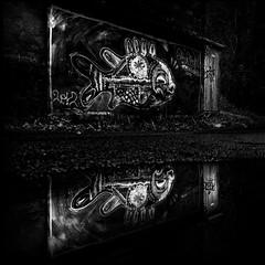 Sarela (Noel F.) Tags: sony a7r a7rii ii fe 24105 graffiti street art carpa santiago compostela sarela de abaixo galiza galicia