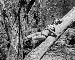 Relaxing Along the River Bank (Laveen Photography (aka cyclist451)) Tags: az arizona douglaslsmith eastforkverderiver flowingspringsarizona laveenphotography naturallight phoenix ambientlight artisticnude backtonature fashion model nude nudemodeling kaitlynnday04 flowingsprings kaitlynnday