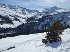 DSCF3719 (Laurent Lebois ©) Tags: laurentlebois france nature montagne mountain montana alpes alps alpen paysage landscape пейзаж paisaje savoie beaufortain pierramenta arèchesbeaufort