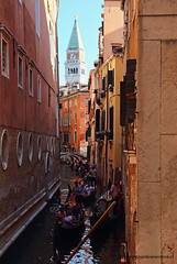 """Tower of San Marco • <a style=""""font-size:0.8em;"""" href=""""http://www.flickr.com/photos/45090765@N05/46557962174/"""" target=""""_blank"""">View on Flickr</a>"""