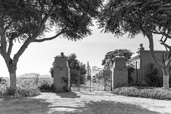 Tacama Hacienda/Winery, in Black and White (_aires_) Tags: aires iris wroughtirongate lightandshadowplay trees gate canoneos5dmarkiv canonef2470mmf28liiusm tacamahacienda tacamawinery tacamaicaperu