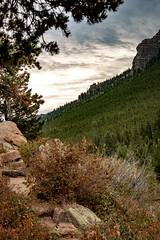 A Good Morning (gljorgen) Tags: colorado rmnp lilylake morning trees clouds mountain