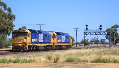 8129 and 8135 wait in Lubeck Loop for PM4 to cross before moving back to Murtoa (bukk05) Tags: 8135 8129 cross lightloco mainline vline vr victorianrailways victorianrailway victoria canon60d canon zoom 2019 signal summer artc australia sg standardgauge station diesel freight flickr horsepower hp lubeckloop lubeck 81class pnruralbulk pacificnational pn photography photo tracks train trains tamron tamron16300 rail rp3 railroad railpage railwaystation railwaystations railway engine export westernstandardgaugeline wimmera clyde clydeengineering electromotivediesel explore jt26c2ss emd emd16645e3b