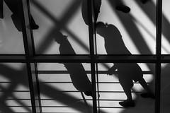 shadow walk (ThorstenKoch) Tags: street streetphotography schatten stadt strasse shadow schwarzweiss silhouette sun sonne blackwhite bnw saturday fuji fujifilm thorstenkoch licht lights lines linien light lissabon lisboa lisbon art architecture architektur h