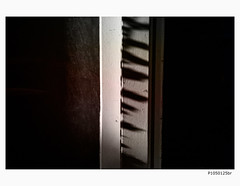 P1050125br (Leonie Polah) Tags: detail light dark abstract line border amsterdam 2018 leoniepolah