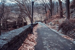 Walk with me... (cesar.toribio1218) Tags: newyork nycparks nycphotography abeautifulplace naturalbeauty naturescolors