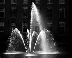 Fontein Hofvijver © Inge Hoogendoorn (ingehoogendoorn) Tags: water hofvijver fountain fontein denhaag thehague binnenhof shutterspeed