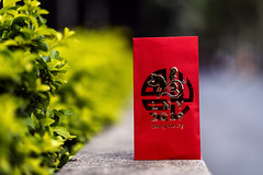 Happy Chinese New Year / Gong Xi Fa Cai (Photos By Dlee) Tags: gongxifacai chinesenewyear redpacket sonyalphaa7iii sonya7iii sonya73 sony sonyalpha mirrorless fullframe fullframemirrorless sonyfe85mmf18 sony85mmf18 85mm prime primelens bokeh bokehlicious photo photosbydlee photography australia sydney newsouthwales nsw summer