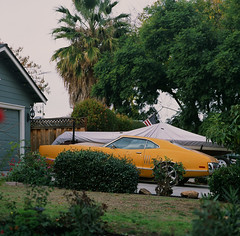 Santa Clara (bior) Tags: hasselblad500cm hasselblad 150mm carlzeiss150mmf4sonnar sonnar santaclara mediumformat 120 6x6cm car suburbs driveway yard grass classiccar mercury montego