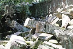 Angkor_Ta Prohm_2014_24