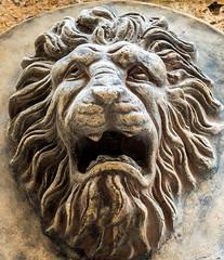 Lion Figure (Valencia) ( High ISO) (Olympus OM-D EM5-II & Sigma 56mm f1.4 DN Prime) (1 of 1) (markdbaynham) Tags: spain spanish spanishcity valencia valencian valenciacanibal valenciana urban city vlc espana espanol m43 metropolis olympus olympusmft olympusomd omd omdm43 omdem5 em5 em5ii em5mark2 em5mkii evil mirrorless microfourthird microfourthirds prime primelens fixedlens micro43rd m43rd 56mm f14 sigma sigmadn lionfigure sculpture highiso