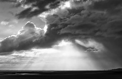 Bay of Somme nature reserve (hbensliman.free.fr) Tags: travel landscape nature picardy bay france coast sea outdoor light cloud black white ngc pentax pentaxart