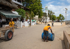 Workers on the seaside in town, Lamu county, Lamu town, Kenya (Eric Lafforgue) Tags: adults africa barrel colourpicture corniche day eastafrica groupofpeople horizontal islamic kenya kenyan lamu lamuisland men mosque muslim outdoors photography street swahili town traveldestination unescoworldheritagesite workers working worldheritagesite lamutown lamucounty ke