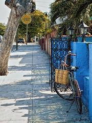 ... (Jean S..) Tags: bicycle wall restaurant street sidewalk blue trees shadows