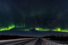 Z19_0799 LT (Zoran Babich) Tags: lapland lappi finland suomi winter night snow auroraborealis northernlights landscape