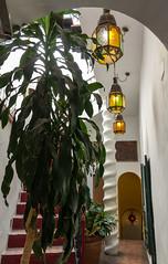 Spain - Cadiz - Vejer - El Jardin del Califa (Marcial Bernabeu) Tags: marcial bernabeu bernabéu europe europa south sur spain españa andalusia andalucia andalucía andalusian andaluz vejer frontera stairs staircase escaleras inside interior