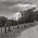 La Route du Mesnil -HDR