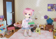 The Fallen Star Finds Hope #4 (Arthoniel) Tags: feign reign shire pets animals cat dog liccachan latidoll suji ns normalskin basic faceup haru tan owl ooak roombox gakman creations artdoll dollhouse collection tiny miniature rement bid balljointeddoll latiyellow house figure vet