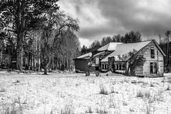Grant County, Oregon (paccode) Tags: solemn d850 landscape winter blackwhite quiet clouds tree abandoned oregon monochrome lonely shack house farm forgotten scary home serious creepy field mountvernon unitedstates us