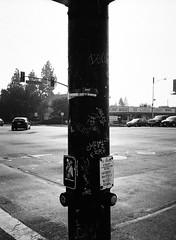 San Jose (bior) Tags: fujifilmga645zi ga645zi 6x45cm sanjose mediumformat 120 trix kodak streetlight street intersection