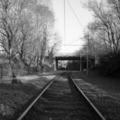 16-02-2019-023 (leofg37) Tags: rolleiflex ilford delta 400 noir et blanc black white argentique photographie la rochelle
