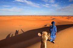 Erg Chebbi Sahara Morocco (klauslang99) Tags: klauslang nature desert sahara camel shadows sand landscape erg chebbi morocco