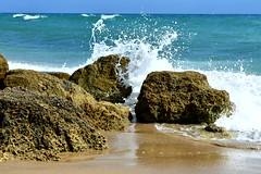 20190324_100228 (Josée Ferland) Tags: floride océan vagues