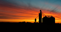 Gorgeous Sunrise (hey its k) Tags: 2019 canon5dmarkiv sky sunrise imga2066pano silo farm colour orange woodstock ontario