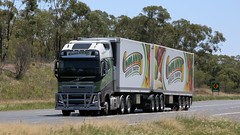 South on the Newell (1/3) (Jungle Jack Movements (ferroequinologist) all righ) Tags: nolans volvo fh16 mack titan osullivans elmore kenworth stock livestock crate parkes nsw new south wales sydney melbourne brisbane newell highway hp horsepower big rig haul haulage freight cabover trucker drive transport carry delivery bulk lorry hgv wagon road nose semi trailer deliver cargo interstate articulated vehicle load freighter ship move roll motor engine power teamster truck tractor prime mover diesel injected driver cab cabin loud rumble beast wheel exhaust double b grunt