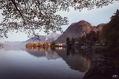 Haus am See (stein.anthony) Tags: landscape salzkammergut österreich landschaft austria autumn herbst herbstfarben attersee berge see wasser spiegelung reflections 1001nights