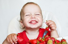 Happy Toddler Boy Eating Strawberries (hatgiongnangvang) Tags: amusingly baby beautiful berries boy care caucasian cheerful child childcare childhood cute eating emotions family feed food fruits fun funny grimy hand happiness happy healthy holding hungry kid laughter lifestyle love meal person pleasure portrait red small smiling strawberries table teeth toddler useful vitamins white year