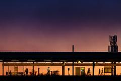 Cornbrook sunset (bitrot) Tags: cornbrook metro metrostation metrolink metrolinkstation passengers platform silhouette station sunset tram tramstation tramstop twilight lightroom canoneos5dmarkiii ef70200mmf28lisusm 200mm f28 115sec iso200
