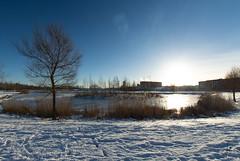 Sunny (jannaheli) Tags: suomi finland helsinki arabia arabianranta nikond7200 talvi winter outdoor outside sunnyday naturephotography luontovalokuvaus naturetherapy luontoterapia luonto nature ice snow jäätä lunta