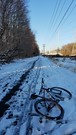 Nordic Tracks (mcfeelion) Tags: snow snowride cycling bike bicycle cct crosscountytrail annandaleva wakefieldpark winter