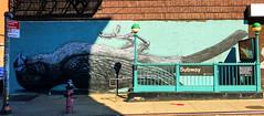 Pet Bird by ROA (wiredforlego) Tags: graffiti mural streetart urbanart aerosolart publicart williamsburg brooklyn newyork nyc ny roa