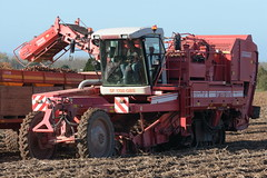 Grimme SF 1700 GBS Self Propelled Potato Harvester (Shane Casey CK25) Tags: grimme sf 1700 gbs self propelled potato harvester traktor traktori tracteur trekker trator ciągnik potatoes spud spuds tatties tattie dig digging pommedetare tillage crop crops kilworth county cork ireland irish farm farmer farming agri agriculture contractor field ground soil dirt earth dust work working horse power horsepower hp pull pulling machine machinery grow growing nikon d7200
