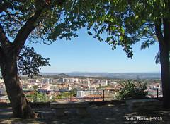 Castelo de Castelo Branco - Vista 01 (Sofia Barão) Tags: portugal castelo branco beira baixa castle