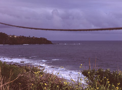 (jjhasse) Tags: pentax645 pentax provia100f provia fujifilm fuji beach crystalcove