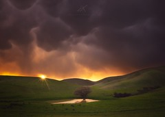 A Stormy Afternoon (kenxu78) Tags: trivalley storm escaype california bayarea spring tree rollinghill green