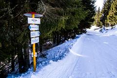 0082_DSC_2532 (marcellszmandray) Tags: kirándulás tél lucskaifátra szlovákia hó fátra
