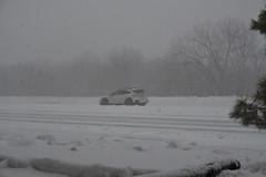 Enough Already (randall321321) Tags: d7500 blizzard snow
