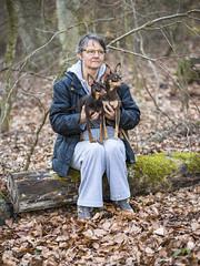 Portrait de famille en forêt (Philippe Bélaz) Tags: nestor ooligan pragois ratierdeprague tamara animal animaux animauxdecompagnie bois brun chiens chocolat feuilles forêts
