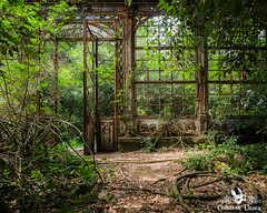 Steampunk Greenhouse, Italy (ObsidianUrbex) Tags: abandoned digital photography greenhouse italy nature overgrown steampunk urban exploration urbex