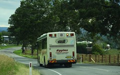 5803MO (damoN475photos) Tags: 5803mo egginscomfortcoaches 22 ivecometro customcoachescb60 evo ii schoolbus wingham taree road 2019