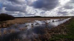 Wet wet wet (Steenjep) Tags: landskab landscape field mark himmel sky regn rain vand water flooded oversvømmet cloud herning jylland jutland danmark denmark